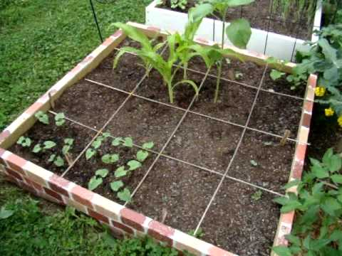 Our New Square Foot Garden Part 5 (for beginners)