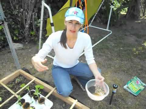 Square Foot Gardening: Novice Tales with Heather