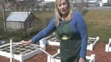 Square Foot Gardening 101: How to protect your garden from pests, critters, heat and chill