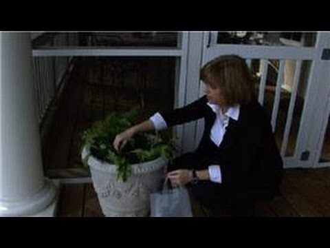 Garden & House Pests : How to Control Garden Pests with Home Remedies