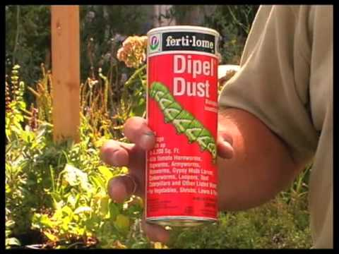 How To Choose Organic Pest Control Products For The Garden