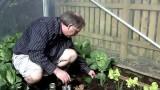 Organic Pest Control | Organic Slug Control | Killarney Garden Centre