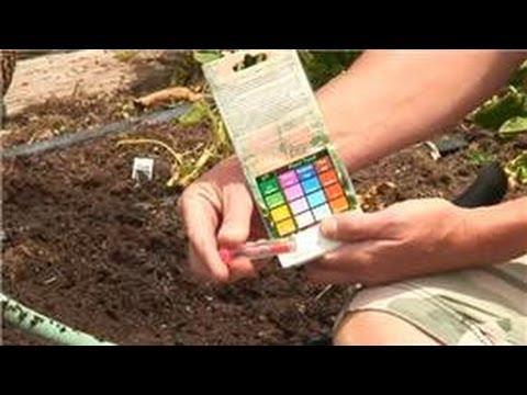 Preparing Your Garden : Methods for Testing Soil PH