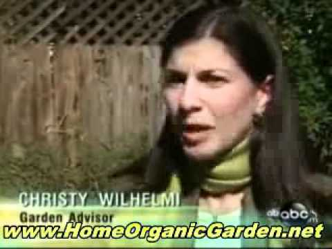 How to Make an Organic Garden – Chemical Fertilizers Versus Organic Gardening