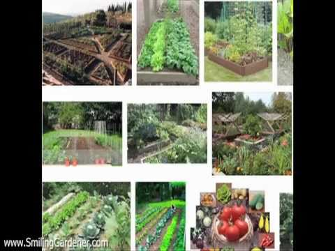 Organic Vegetable Garden Design – 2 Curvaceous Tips