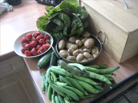 ORGANIC VEGETABLE GROWING IN BOLTON (UK)