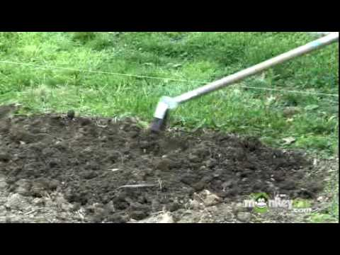 Using Organic Compost in Your Vegetable Garden