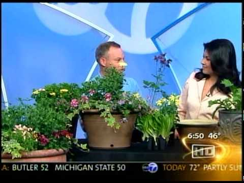 Spring Container Gardening tips from Benjamin Carroll