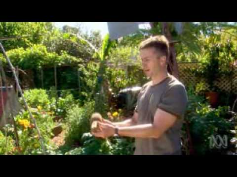 How to Create a Beautiful Edible Landscape – Tim Robson On Gardening Australia