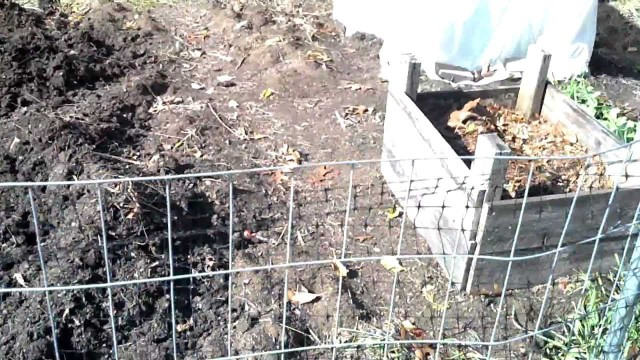 Moving Compost into Garden