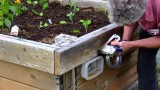 Slug control electric fence raised bed garden