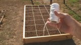 Raised Bed For Square Foot Gardening