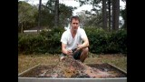 Preparing Square Foot Garden Soil