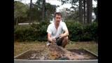 Preparing Square Foot Garden Soil