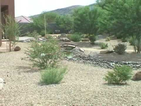 Backyard | Desert Garden Care