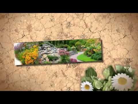 Desert Landscaping Las Vegas | Turf Trimers |(702) 628-5708