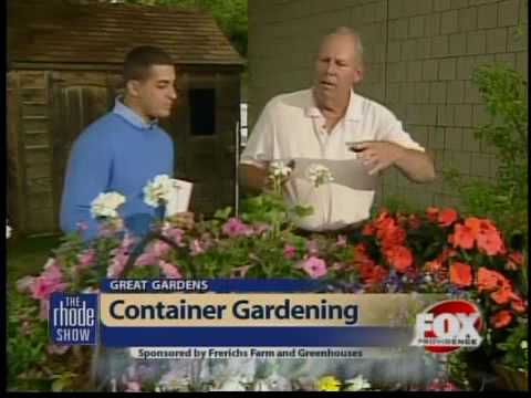 Great Gardens: Container gardening