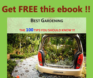 free ebook: Best gardening: the 100 tips you should know