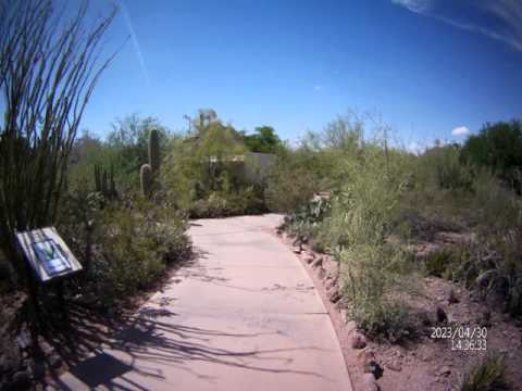 Stop motion tour (of the future!) at desert botanical gardens in Phoenix, AZ