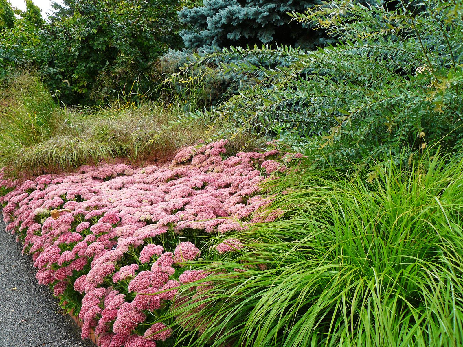 Minnesota Landscape Arboretum2_by_julieweisenhorn