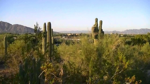 Phoenix's Desert Botanical Garden and Papago Park (HD)