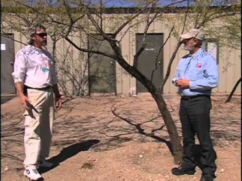 Southwest Parks and Gardens – Desert Botanical Garden – Proper Tree & Shrub Watering