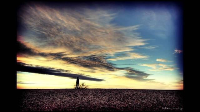 Jon Crosby – Desert Garden