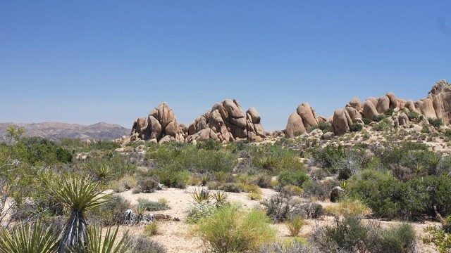 MOJAVE desert landscape, my 1st view of it MysterEy1