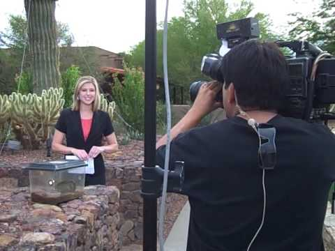Arizonas Family Broadcasts from Desert Botanical Garden