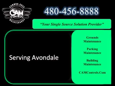 Landscape Company Serving Avondale | 480-456-8888