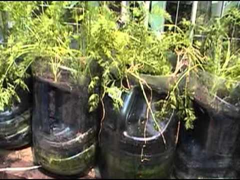 Portable Desert Garden Planters tour