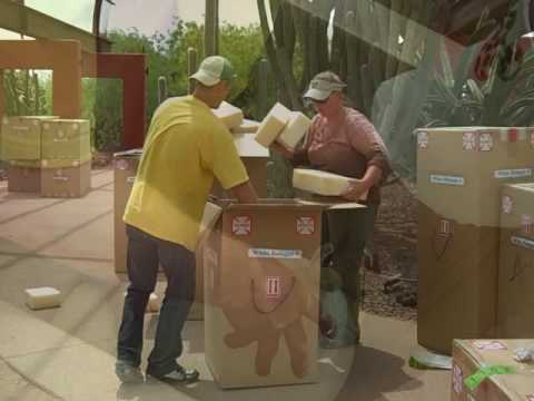 The Chihuly Exhibit De-Install at Desert Botanical Garden – Final Video