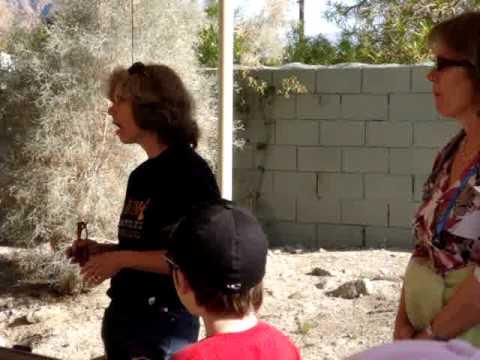 Kids Nature Walk: Desert plants