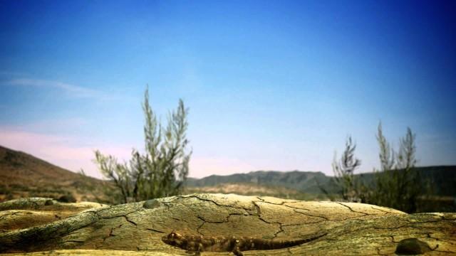 STS desert intro