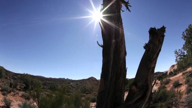 Desert Landscape, Moab Utah