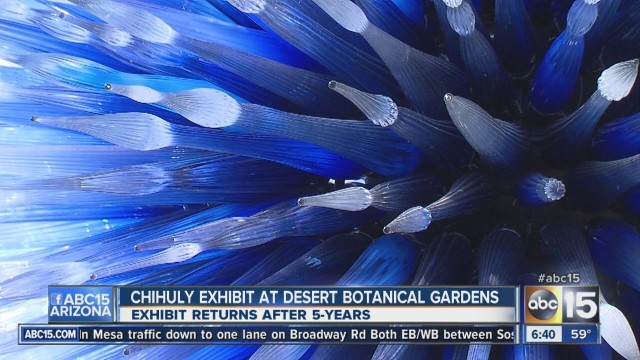 Chihuly exhibit opens at Desert Botanical Garden
