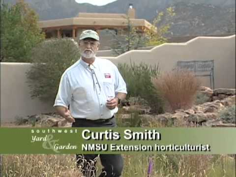 Southwest Parks and Gardens – Introduction