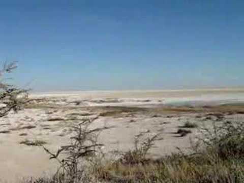 Desert landscape at Etosha lake