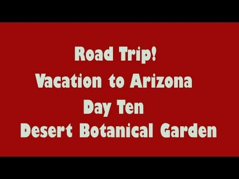 Arizona Road Trip, Day Ten, Desert Botanical Garden