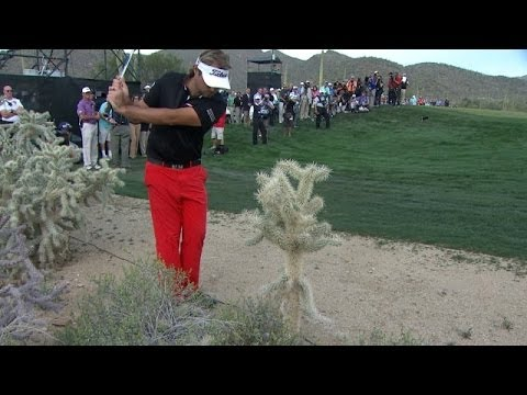 Victor Dubuisson converts unbelievable shot from cactus at Accenture