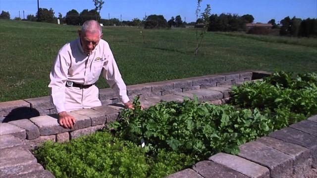 Gardening Guide # 22: Fall Garden Transition