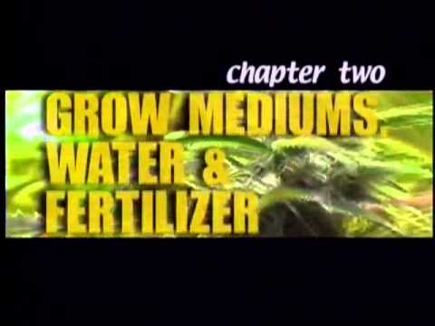 High Times Marijuana Growing part 2 / 12