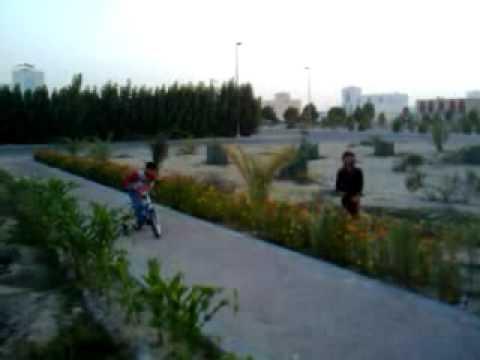 My Desert Garden @ Al Falah, Abu Dhabi, UAE 2/2