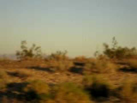 On The Road To FL: Desert Landscape