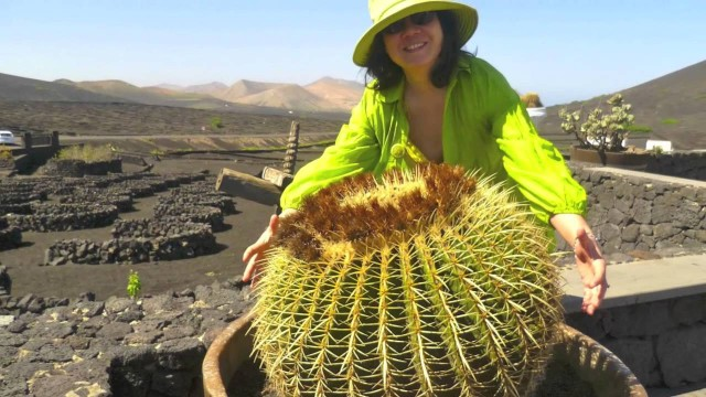 Lanzarote -Cacti, Cycling, Fire Mountains and Sunset