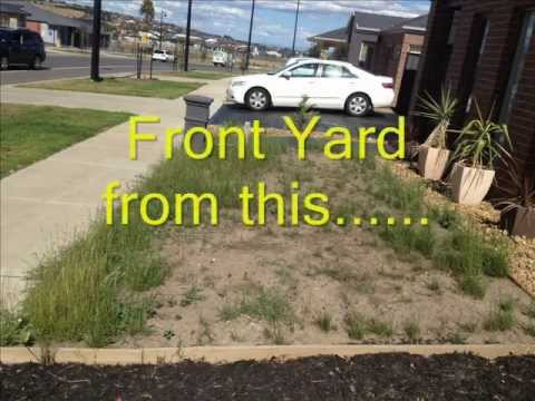 Yard desert garden care for Front garden designs australia