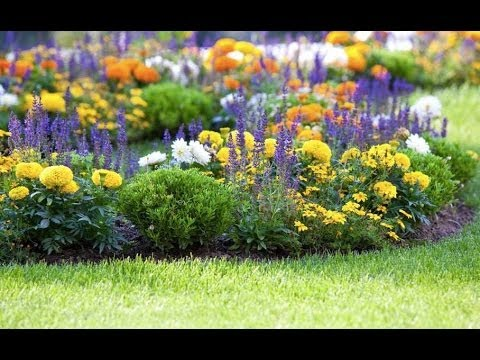 Preparing Planting Areas – Landscaping Ideas