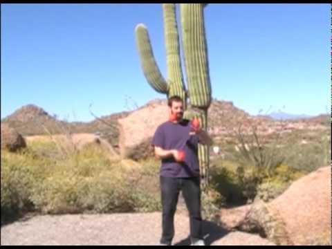 Juggling in the Sonoran Desert