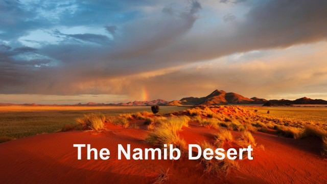 Namib Desert – Time Lapse And Wildlife Photography Namibia