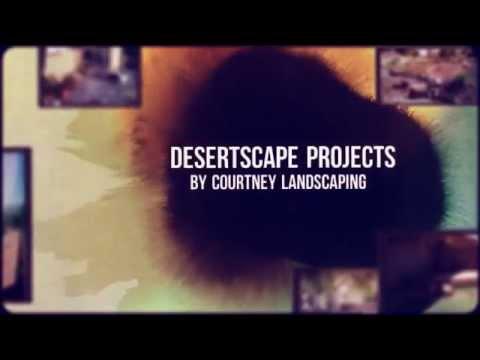 Desertscape Landscape Las Vegas 702-435-5799 NV Desert